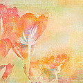 Tulips In Spring by Peggy Collins