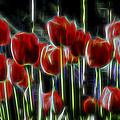 Tulips by Kelley King