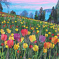 Tulips Lake by Anthony Caruso