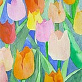 Tulips Multicolor by Christina Rahm Galanis