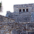 Tulum Ruins Of Mexico - 7 by Tom Doud