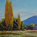 Tumut Farm by Graham Gercken