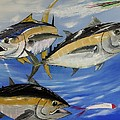 Tuna Attack by Kevin  Brown