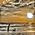 Tunco Card My Mate D by Stav Stavit Zagron