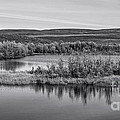 Tundra Pond Reflections by Priska Wettstein