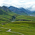 Tundra View From Eielson Visitor's Center In Denali Np-ak  by Ruth Hager