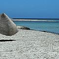 Tunisian Island