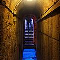 Tunnel Exit by Carlos Caetano