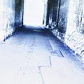 Tunnel by Margie Hurwich