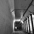 Tunnel by Art Dingo