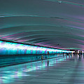 Tunnel Of Colour by Michael  Podesta