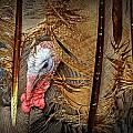 Turkey And Feathers by Randall Nyhof