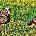 Turkey Pair by Alice Gipson