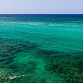 Turks Turquoise by Chad Dutson