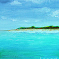 Land Ahead Turquoise Waters by Robyn Saunders