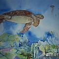 Turtle And Jelly Fish by Donna Acheson-Juillet