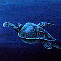 Turtle In The Red Sea by Mackenzie Moulton