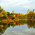 Turtle Pond 2 - Central Park - Nyc by Madeline Ellis