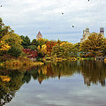 Turtle Pond - Central Park - Nyc by Madeline Ellis