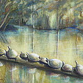 Turtles On A Log by Phyllis Dunn