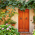 Tuscan Door by Brian Jannsen