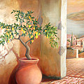 Tuscan Lemon Tree by Michael Rock