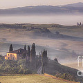 Tuscan Morning by Michele Steffey