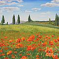 Tuscan Poppies-b by Jean Plout