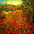Tuscan Poppies by Lou Ann Bagnall
