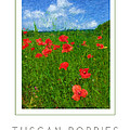 Tuscan Poppies Poster by Mike Nellums