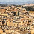 Tuscan Rooftops Siena by Liz Leyden