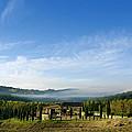 Tuscan Sky Vineyard by Norman Pogson