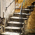 Tuscan Staircase by Mike Nellums