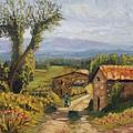 Tuscany Farm Road by Elena Sokolova