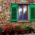 Tuscany - Flower Pots In Chianti by Jacqueline M Lewis