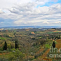 Tuscany Life by Elvis Vaughn