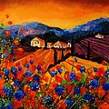 Tuscany Poppies by Pol Ledent