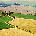 Tuscany Summer by Mircea Costina Photography