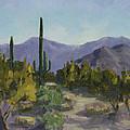 The Serene Desert by Maria Hunt