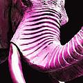 Tusk 2 - Pink Elephant Art by Sharon Cummings