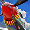 Tuskegee Airmen Fighter Plane by Michael Tucker