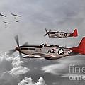Tuskegee Airmen by J Biggadike