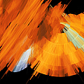Tutu Stage Left Abstract Orange by Andee Design