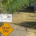 Tv Movie Homage Killer Bees 1974 B's Crossing Black Canyon City Arizona 2004 by David Lee Guss