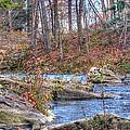 Twenty Mile Creek by CR  Courson