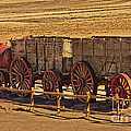 Twenty-mule Team In Sepia by Robert Bales