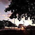 Twilight In Santos Beach Park by Vera Radoja de Vasconcelos