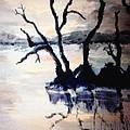 Twilight Lake Sunset by Ronnie Egerton