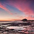 Twilight On Harkness Rocks Bamburgh by Richard Burdon
