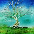 Twilight Tree by Brenda Owen